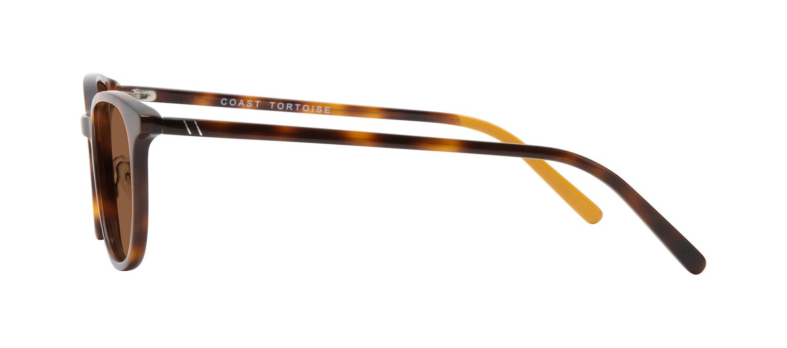 Affordable Fashion Glasses Round Sunglasses Men Coast Tortoise Side