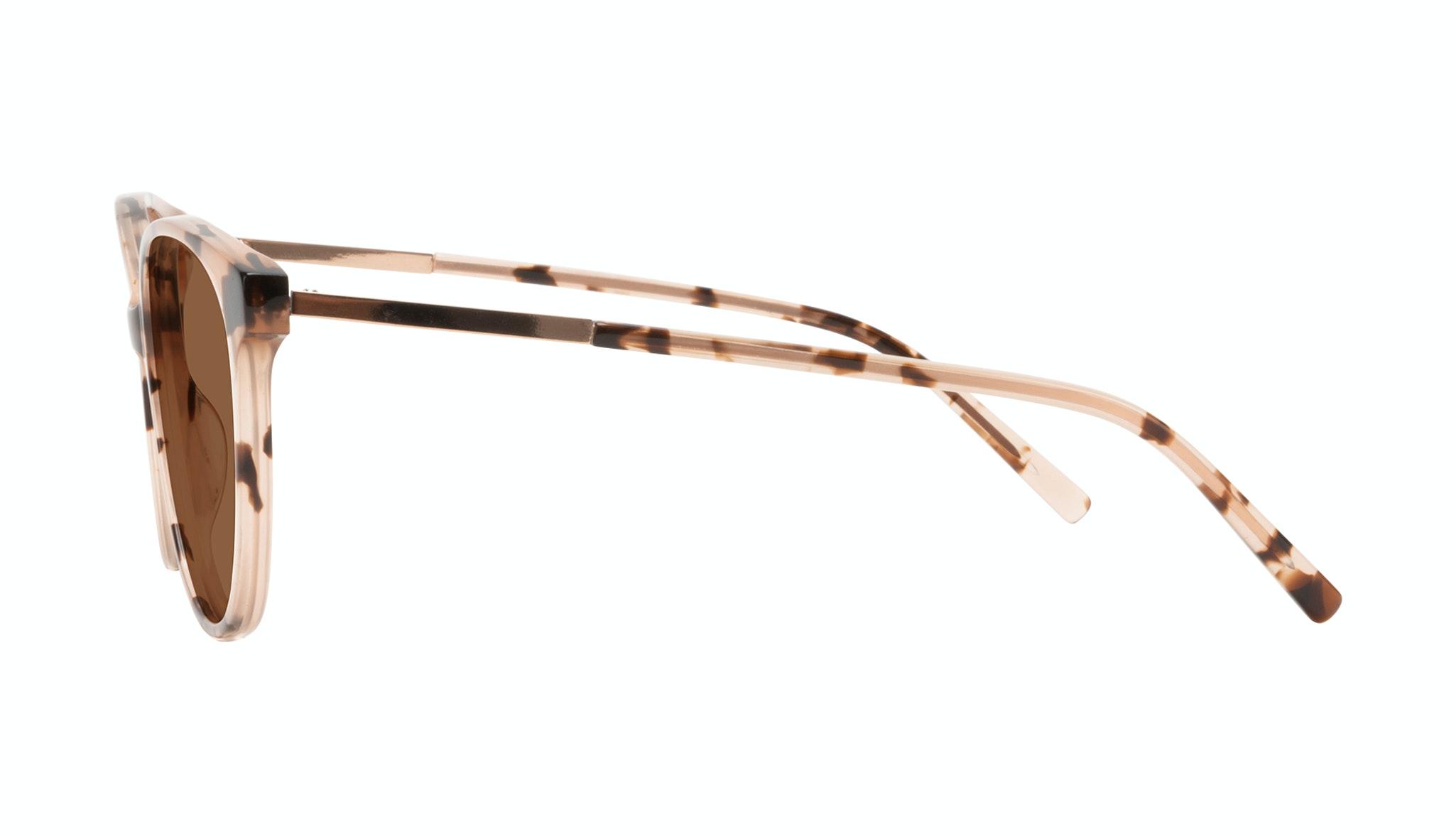 Affordable Fashion Glasses Round Sunglasses Women Imagine II Plus Tortie Side