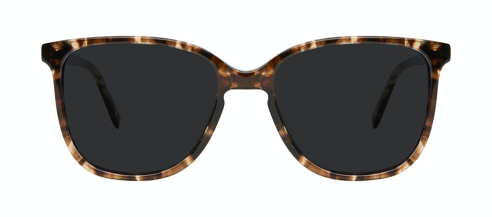 Lunettes tendance Carrée Lunettes de soleil Femmes Lead Leopard Face