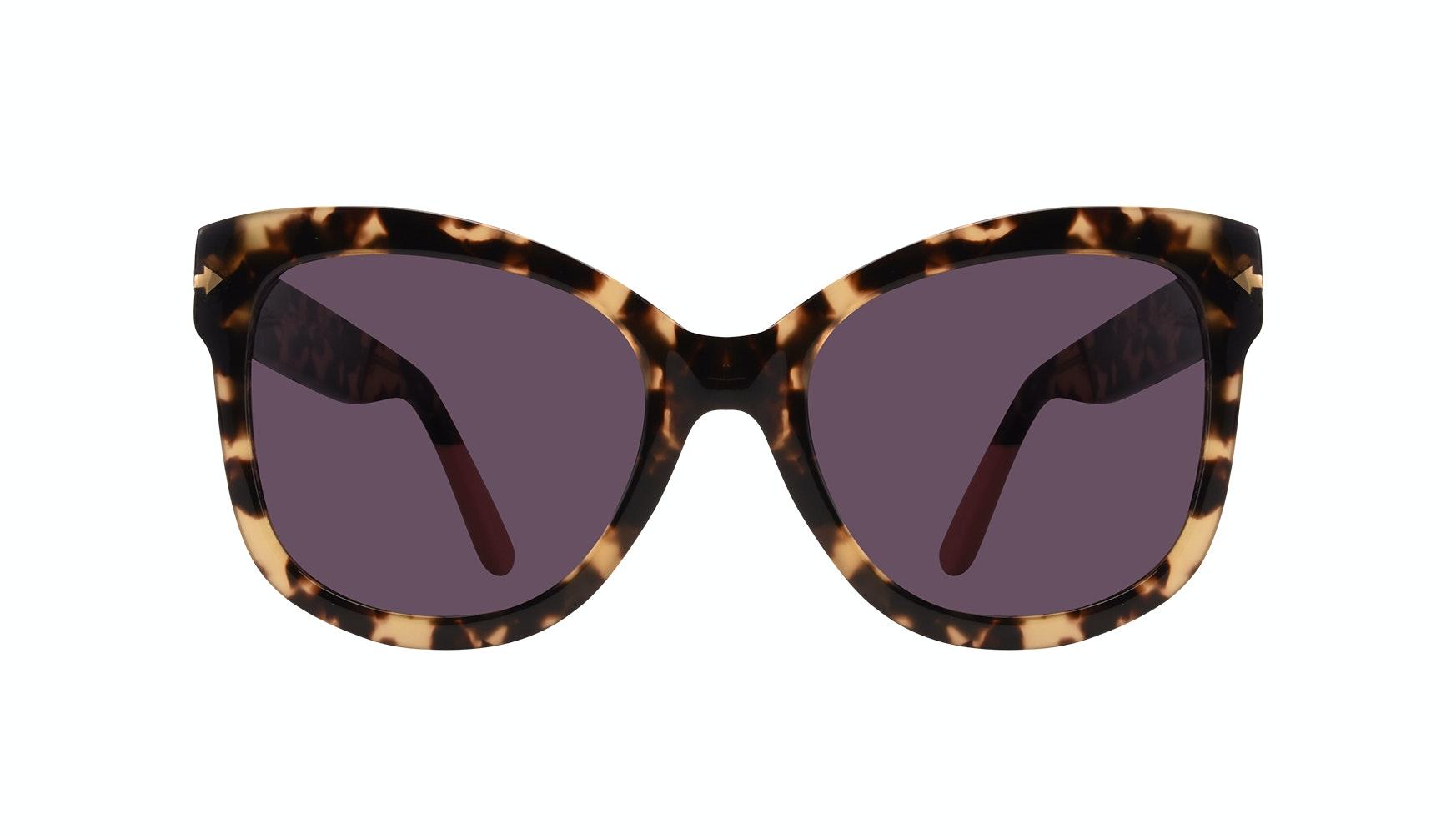 Lunettes tendance Oeil de chat Carrée Lunettes solaires Femmes Marlo Espresso Face