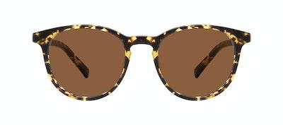 Lunettes tendance Ronde Lunettes de soleil Hommes Select Tortoise Matte Face