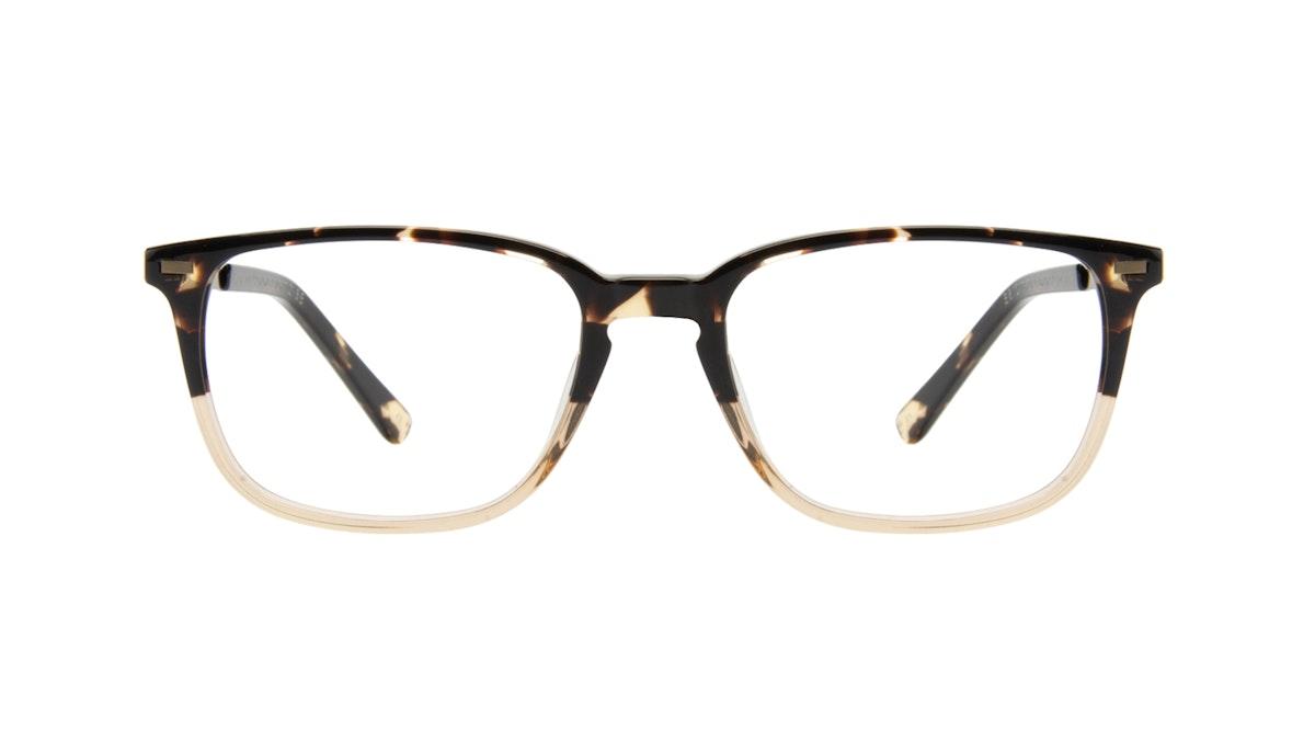 Men's Eyeglasses - Sharp in Golden Tortoise   BonLook